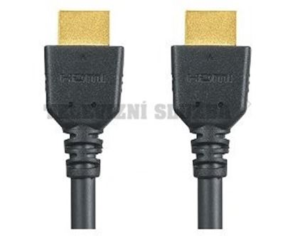 Obrázek HDMI kabel RP-CDHX30E-K - Panasonic